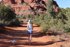 chefv-walk-arizona-walk-dog-800p-600x400