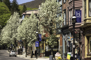 Shopping in Jim Thorpe, Carbon County PA