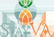 StayVA Logo