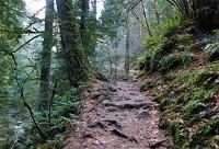 empty-bike-trail