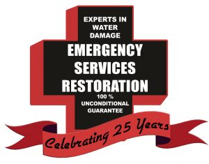 ESR Emergency Services Restoration