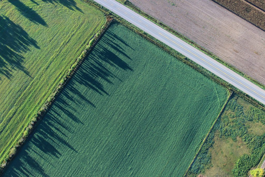 agriculture_fields