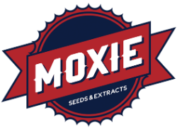 Moxie Seeds and Extracts