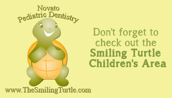 Smiling Turtle Novato Chamber Art Wine Music Dentistry Pediatric Kids Area