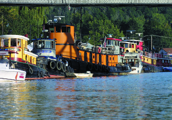 TUGS-0407_IMG-Tom_Killips_343x240