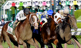 Thoroughbred Racing SeasonSaratoga
