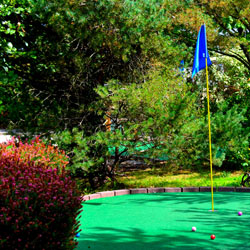 mini golf green with flag