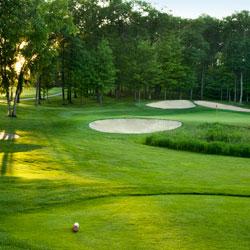 par 3 golf tee and green