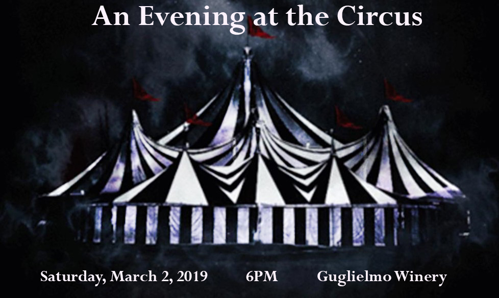 An evening at the Circus
