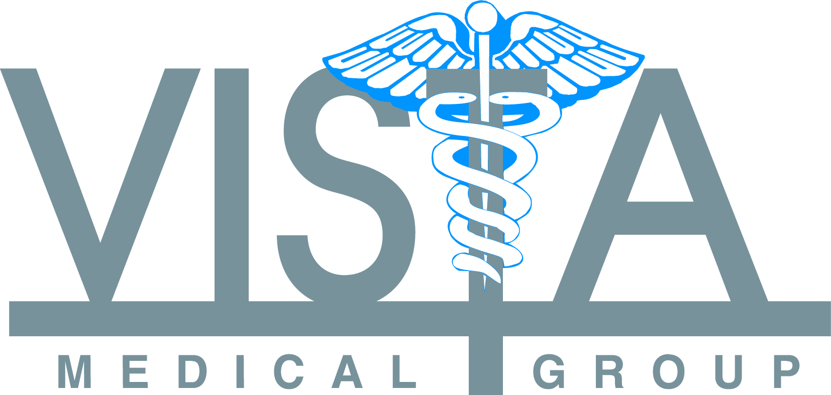 Vista Medical Group Logo