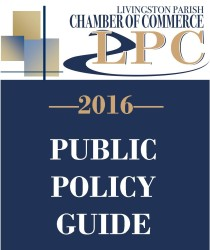 2016_Public_Policy_Guide_image_mediumthumb