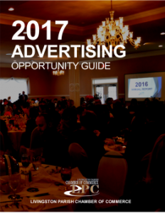 2017_Advertising_ONLY_Book_IMAGE_copy_262x339