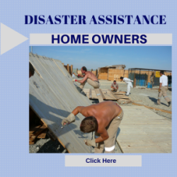 Disaster_Home_300x300_mediumthumb