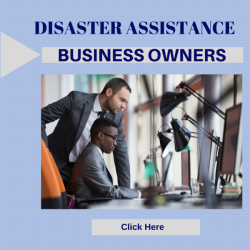 disaster_business_gallery_mediumthumb