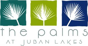 THE PALMS logo large