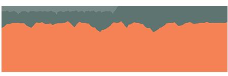 Alaska Young Professionals Summit logo