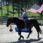 Sue Towne celebrated Independence Day with VanDarr for the July 2019 contest.