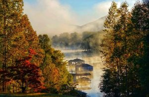 """Honorable Mention: """"Section 8 Fog"""" by Kathleen Riordan"""