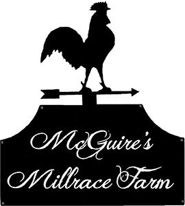 McGuires Millrace Farm, Murphy, NC