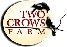 Two Crows Logo