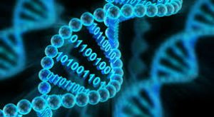 bioinform