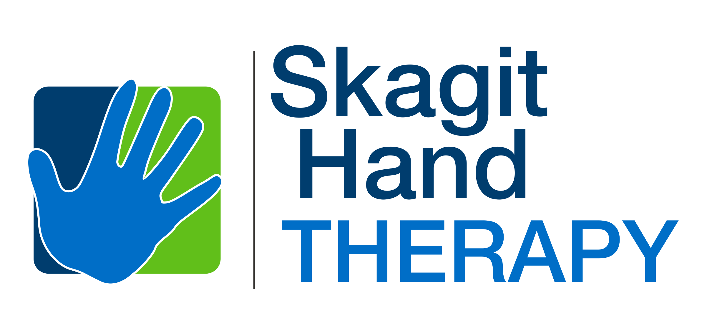 Skagit hand Therapy