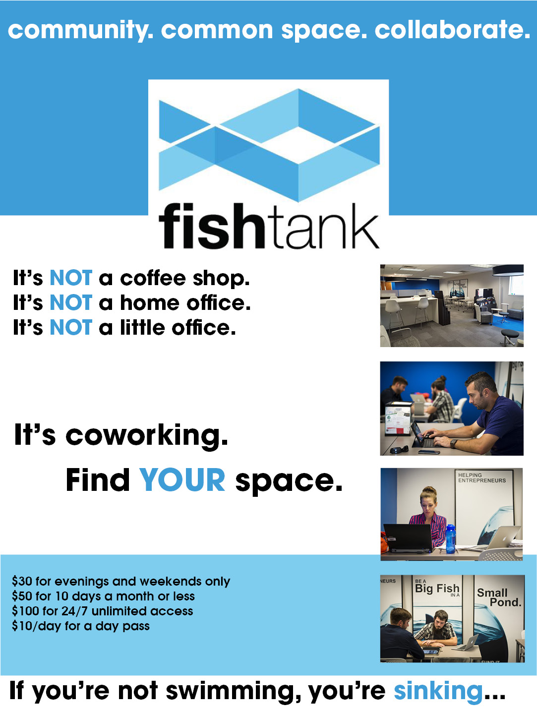 website graphic about fishtank2018