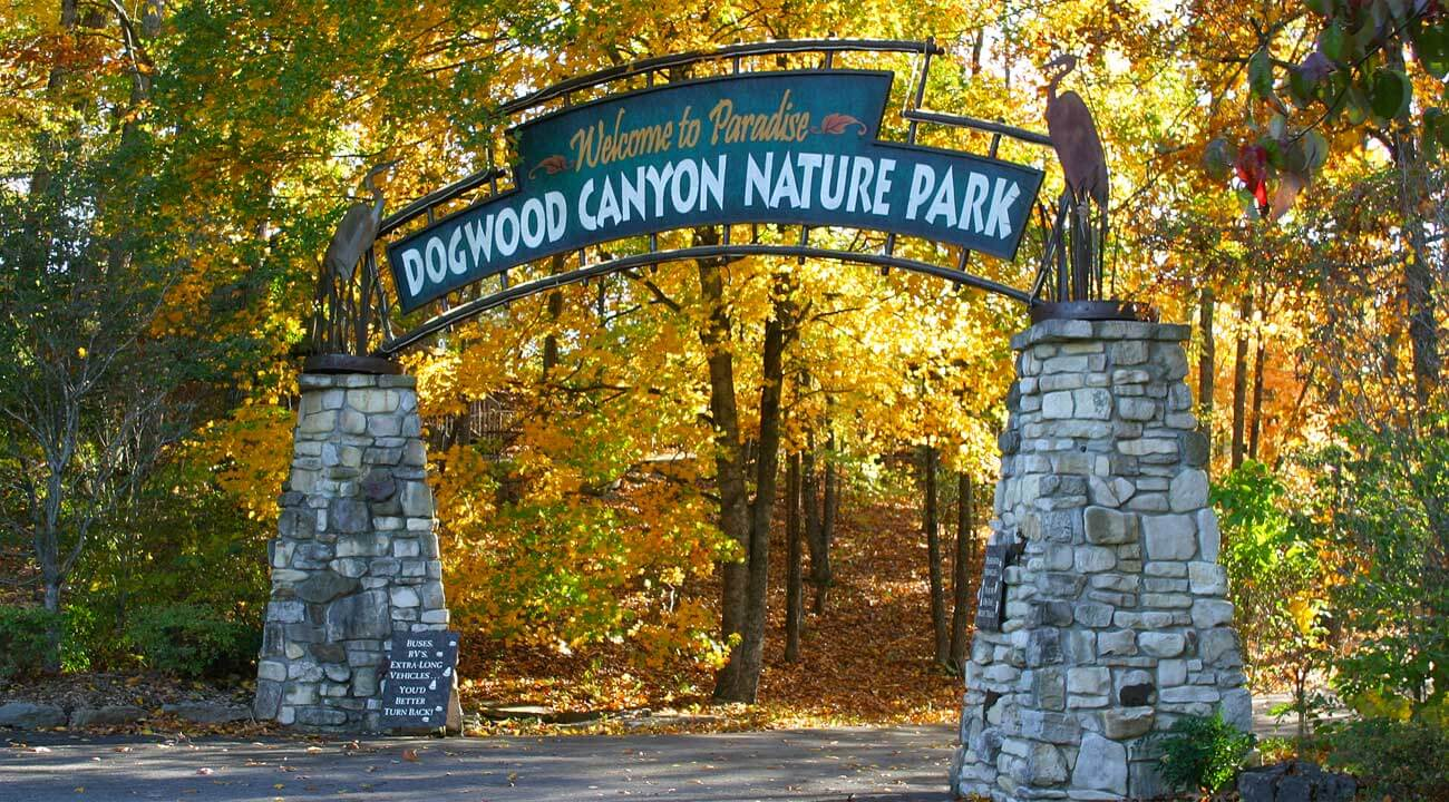 Dogwood Canyon Adventure Park