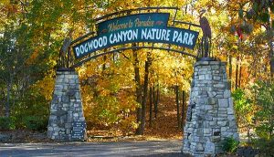 Dogwood Canyon Nature Park